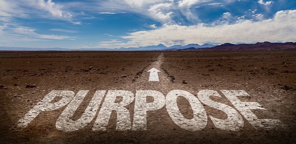 Work towards a purpose